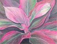 silk pink ti